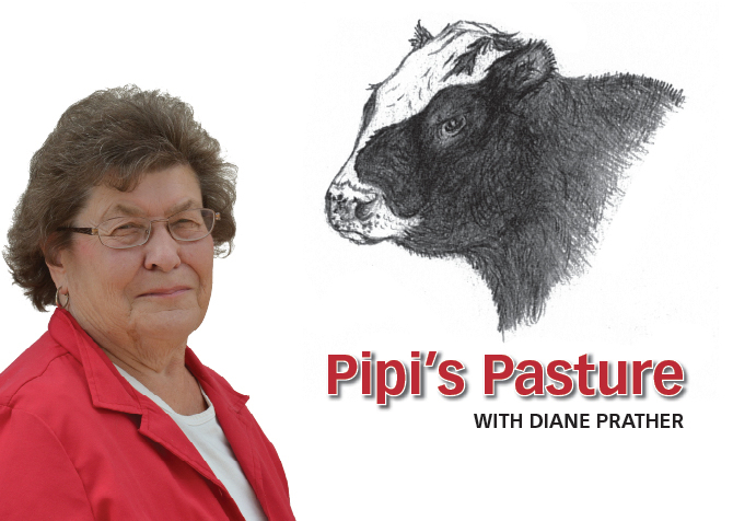 From Pipi's Pasture: It's one hot July!