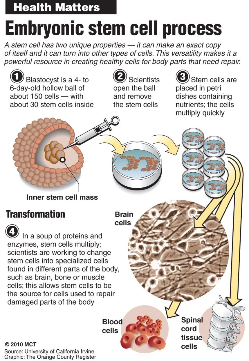 stem cell research a moral Embryonic stem cell research is not funding should be used to greatly expand adult stem research, to circumvent the many moral issues involving the.