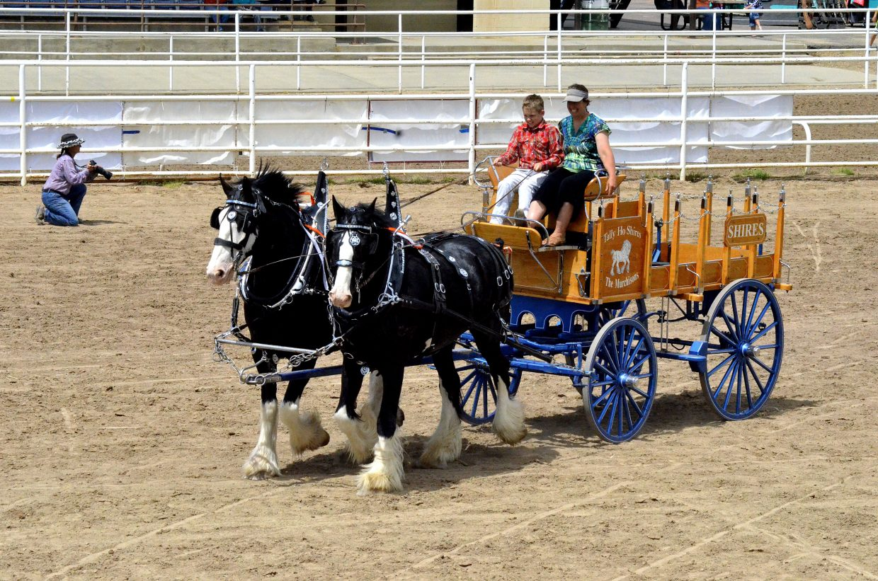 Several groups participated in the Moffat County Horse Power draft horse and mule show on Sunday at Grand Olde West Days.