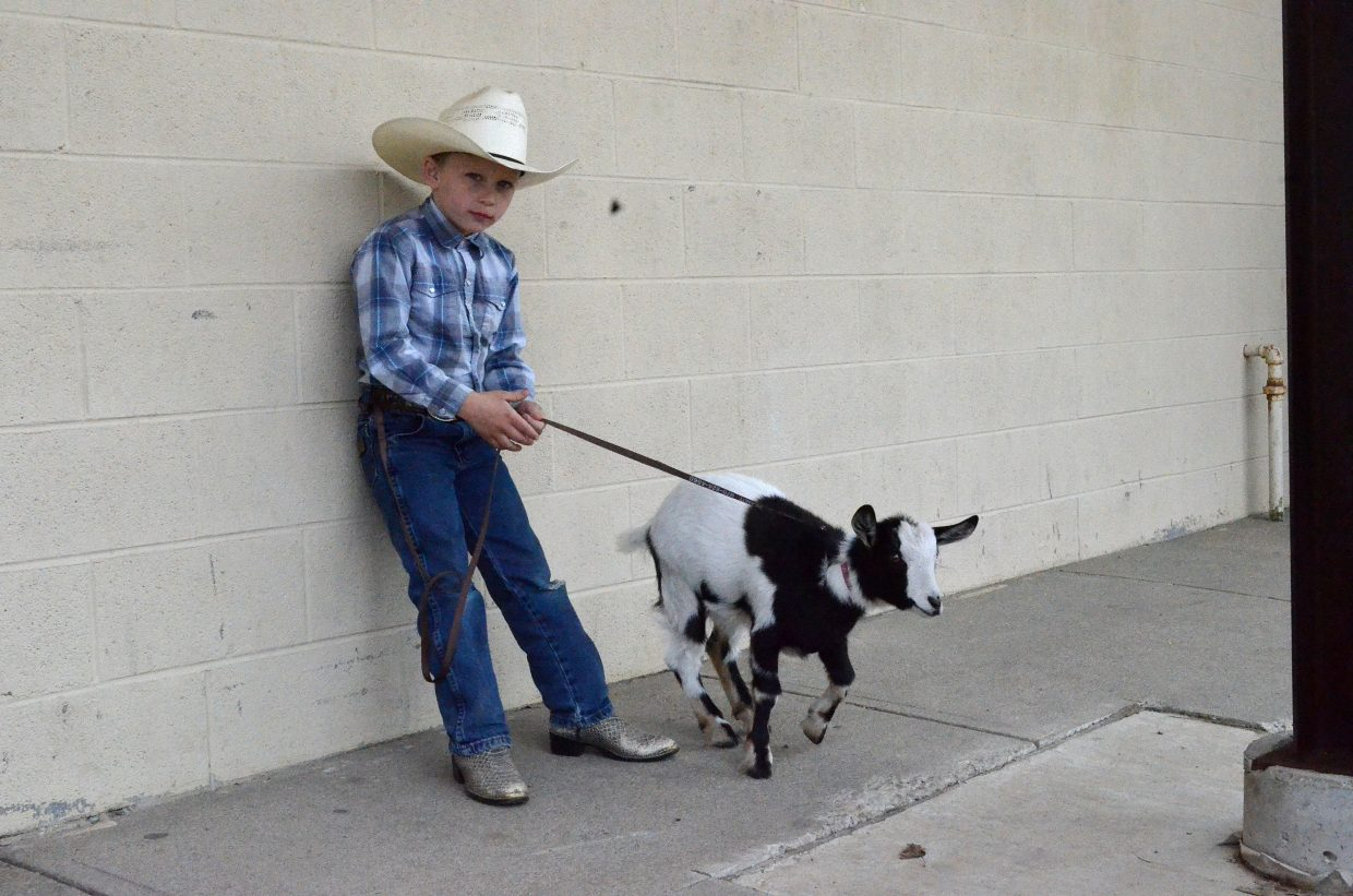Tristen Counts, 7, hangs out with his 3-month-old goat, Nana, at the fairgrounds on Sunday during Grand Olde West Days.