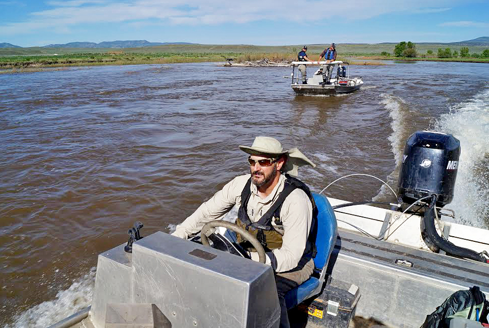 Cory Noble, Colorado Parks and Wildlife aquatic biologist, captains the chase boat Thursday morning as a shock boat follows. The team spent the entire day removing non-native fish from the Yampa River.