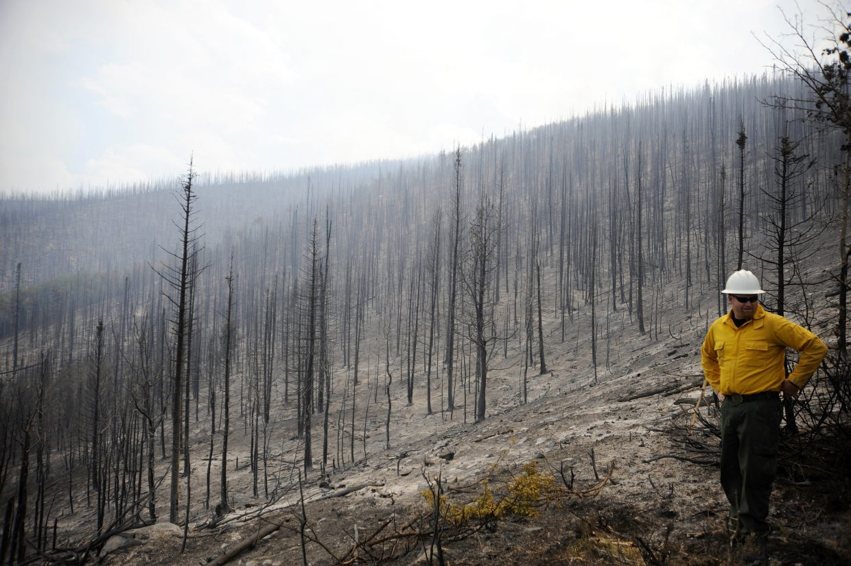 Steamboat Springs U.S. Forest Service District Ranger Chad Stewart on Friday surveys a hillside scorched by the Beaver Creek fire.