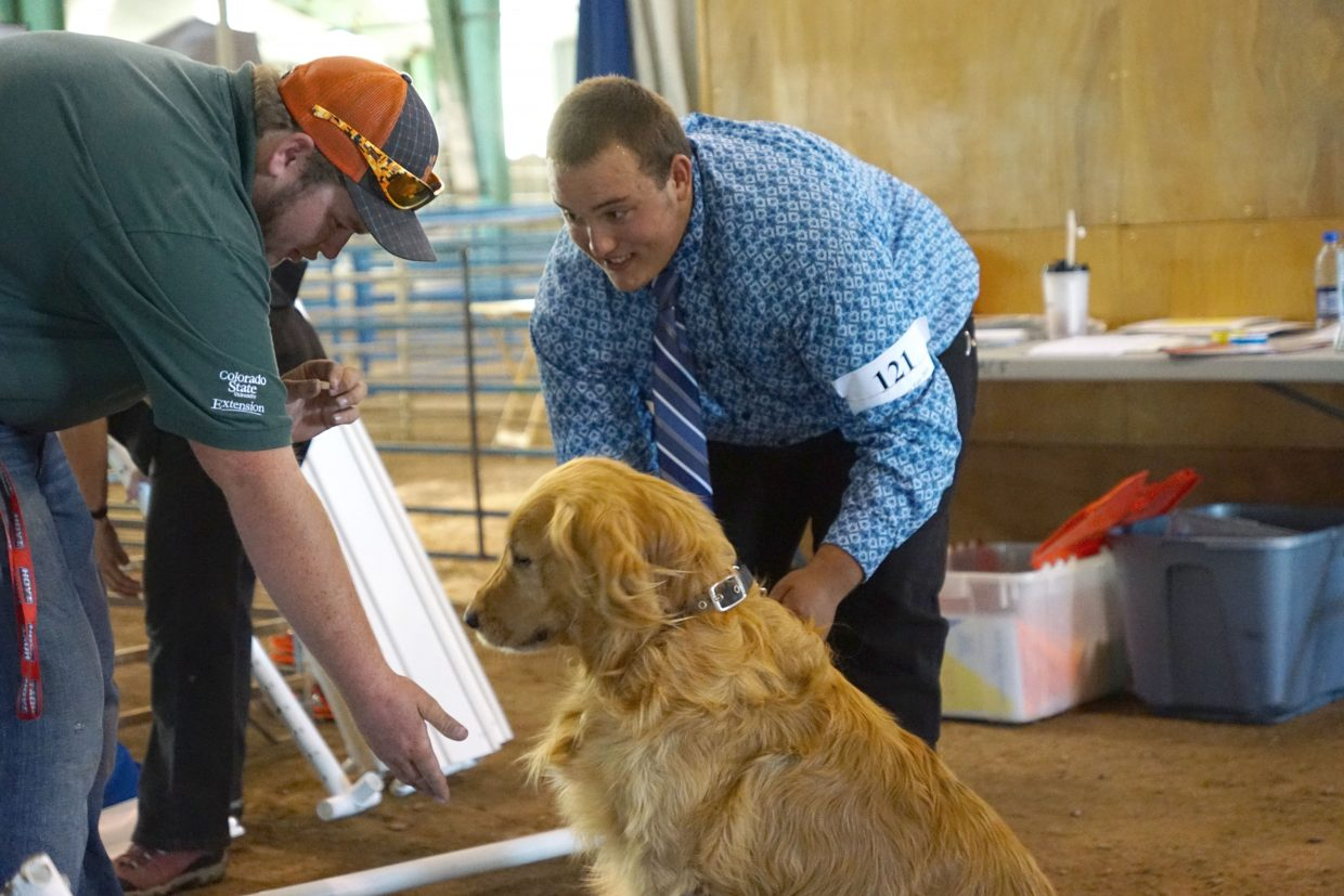 4-H council member Cutter Polly congratulates Bryson Davis and his dog Levi as they left the dog show ring at the 2016 Moffat County Fair.