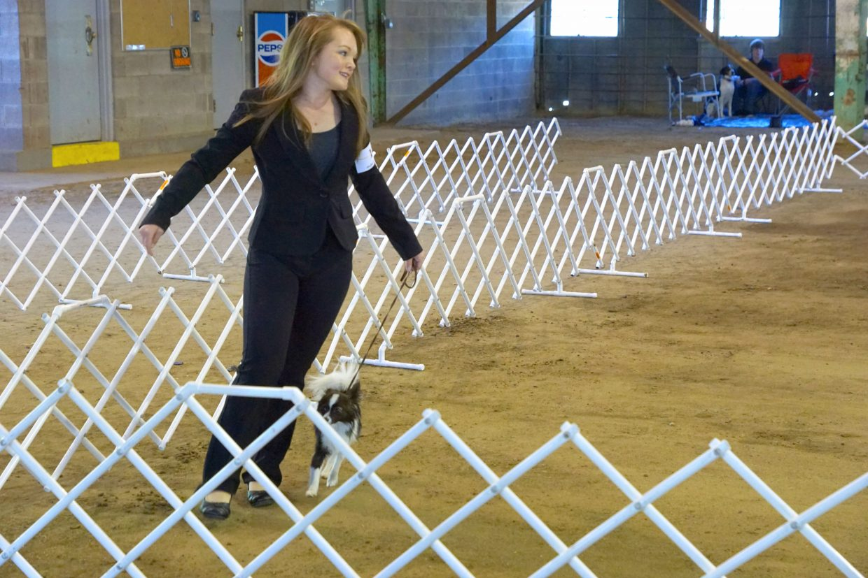 Kyann Kainz and her dog Dempsy go around the corner of the show ring during the showmanship competition at the the dog show at the 2016 Moffat County Fair.