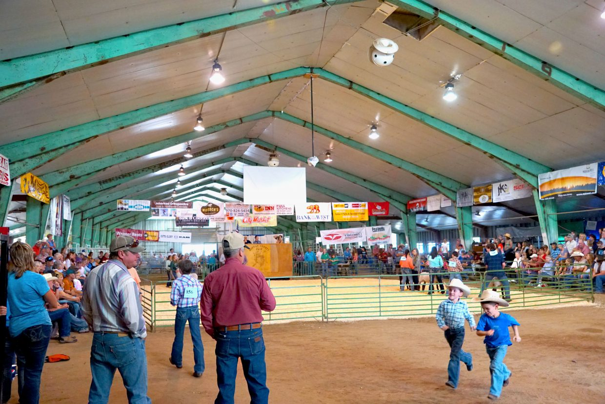The 2016 Moffat County Fair sheep show drew a large crowd to the livestock barn Wednesday.