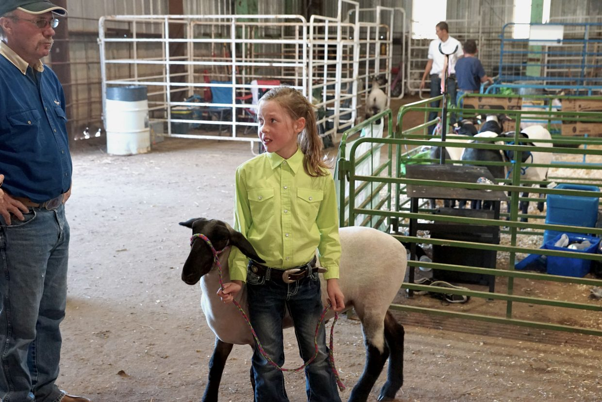 Kayden Grinolds gets some last minute coaching as she and her lamb prepare to line-up for the Sheep Show at the 2016 Moffat County Fair.