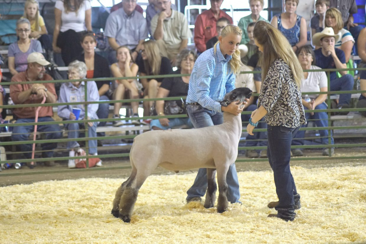 Trinity Boulger answers the judge's questions during the Junior Sheep Showmanship competition at the 2016 Moffat County Fair.