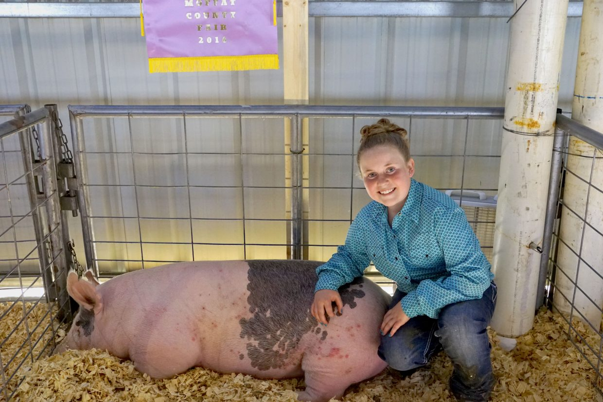 Grace Baker and Champene returned to the swine barn as Grand Champion Junior showmanship and Reserve Grand Champion market swine winners at the 2016 Moffat County Fair.