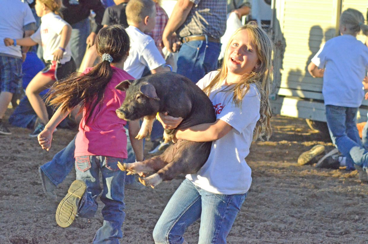 Kyla Gannon, 8, happily hauls her new pig to the handlers during the Catch-a-Pig contest Friday night. Dozens of kids were involved in the annual scramble to claim their own pig.