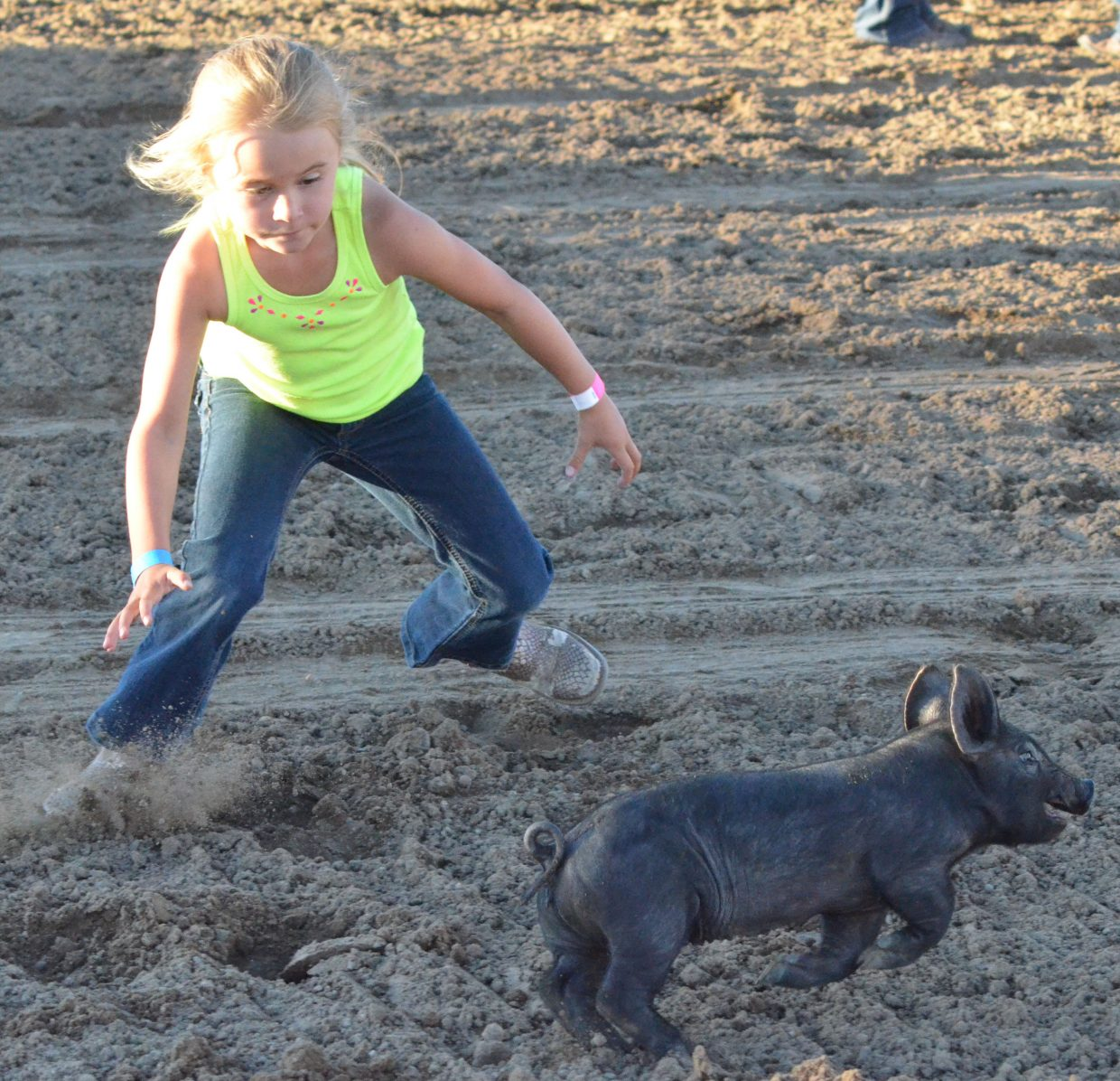 Izzy Shaffer darts after one of the pigs up for grabs during the 5- to 7-year-old age division of the Catch-a-Pig contest Friday night at Moffat County Fairgrounds.