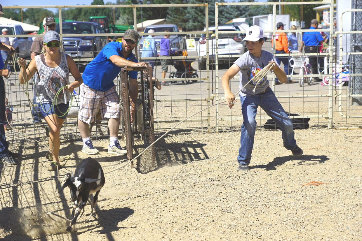 Ty Pinnt puts a loop around a goat at the 2016 Moffat County Fair.
