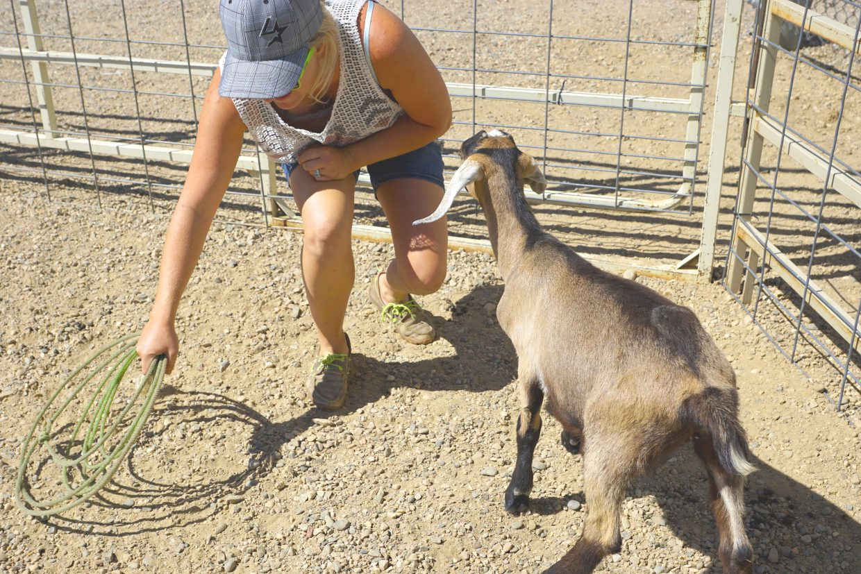 Tia Brannan reaches for her rope as she talks to one of her bottle-fed goats during the 2016 Moffat County Fair. Brannan and her fiancé Brandon Edwards raise a herd of goats in Grand Junction. They support Brannan's hometown fair by supplying goats for the annual competition.