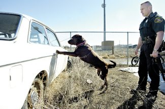 Colorado Supreme Court issues ruling in Craig drug dog case