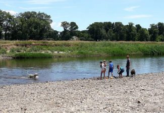 Yampa River flow slowing in Moffat County, but  mosquitoes sticking around with moisture