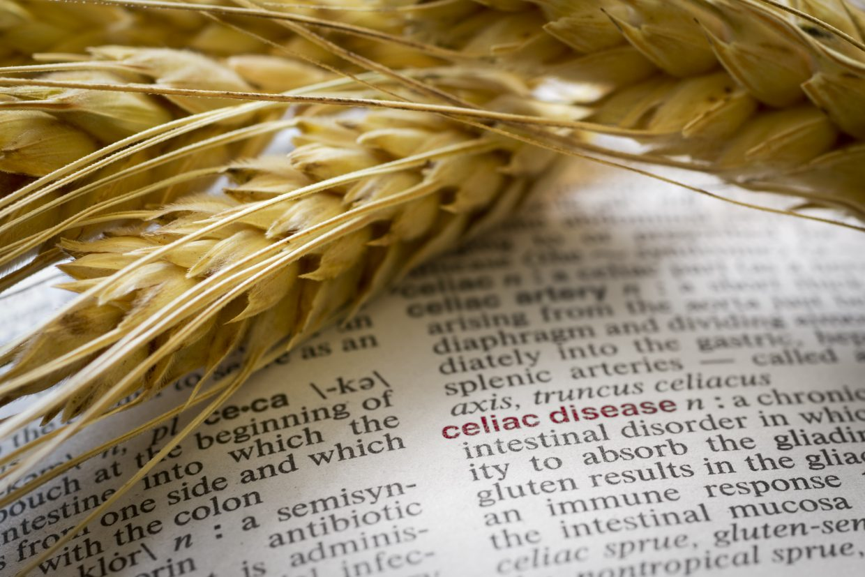 Going Against The Grain The Trouble With Self Diagnosing Gluten