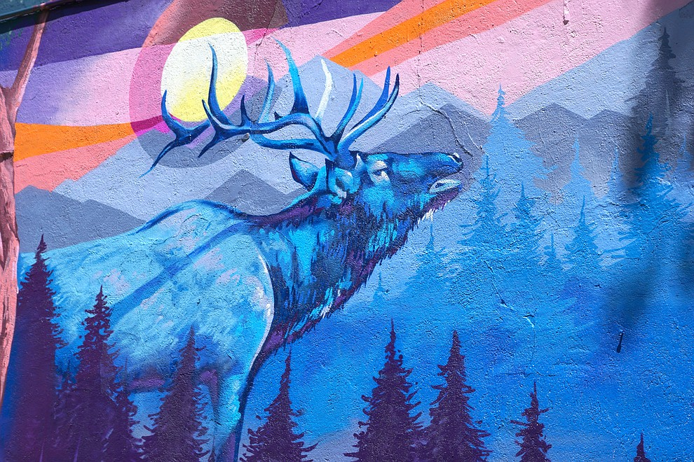 An imposing elk bugles in front of a stylized Colorado flag in the new mural on the side of Main Street Emporium in downtown Craig.
