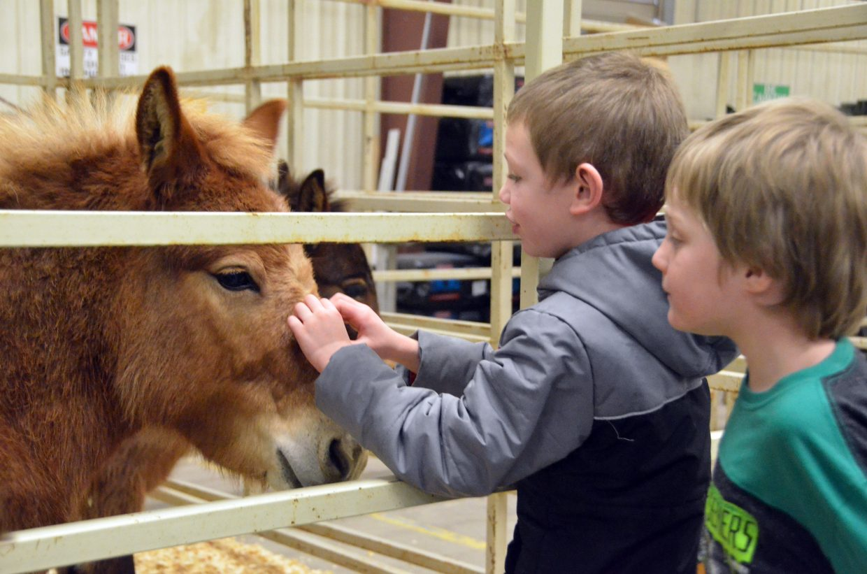 Sandrock Elementary School kindergartners Arsynn Duncan, left, and Stephen Lighthizer meet Nacho the donkey during Barnyard Day hosted by Moffat County High School Future Farmers of America.