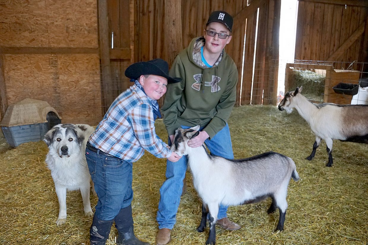 Prince the guard dog joins brothers Zack Winters (8) and Joey Winters as they offer Ruby the goat grain.