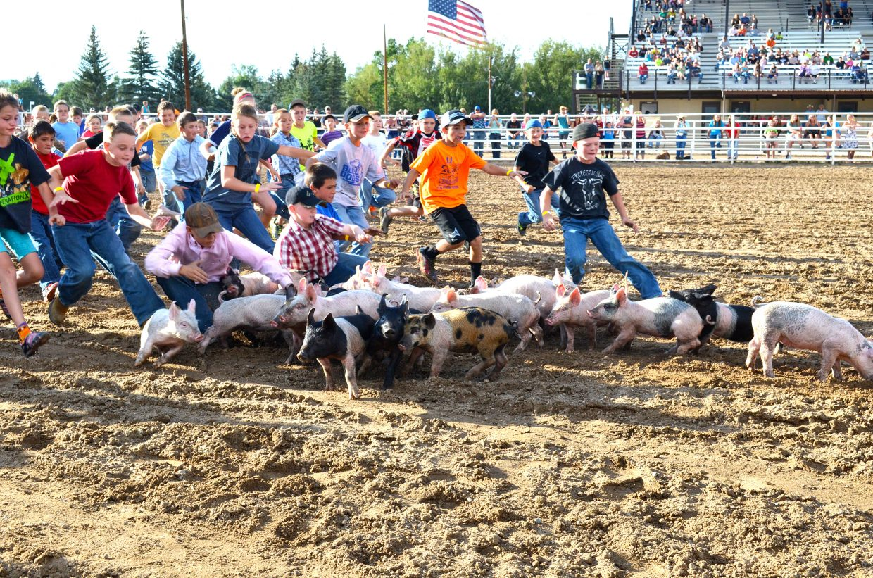 Young children swarm a group of swine in the Moffat County Fairgrounds arena during the 2016 Catch-a-Pig Contest at Moffat County Fair.