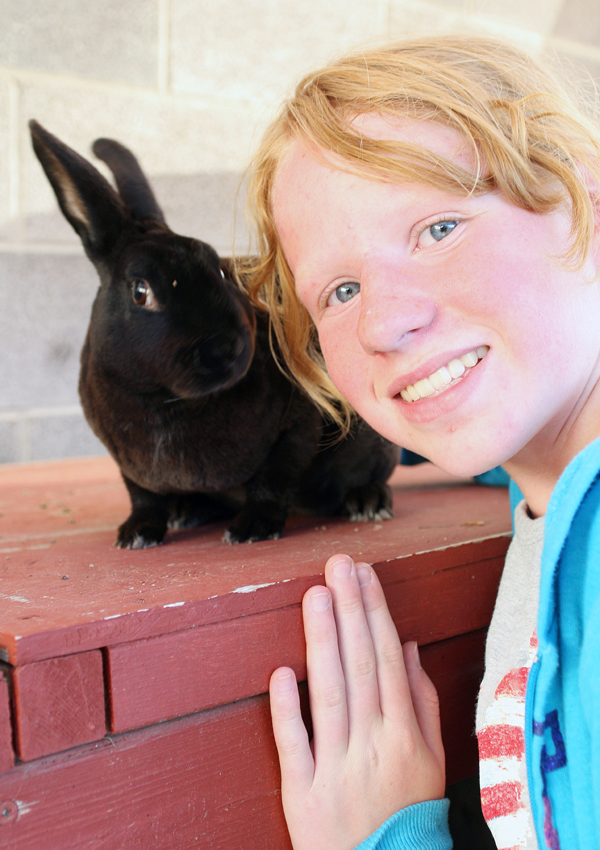 Emma Balstad, then 12, poses with her rabbit, Quill, while prepping for the 2011 Moffat County Fair.