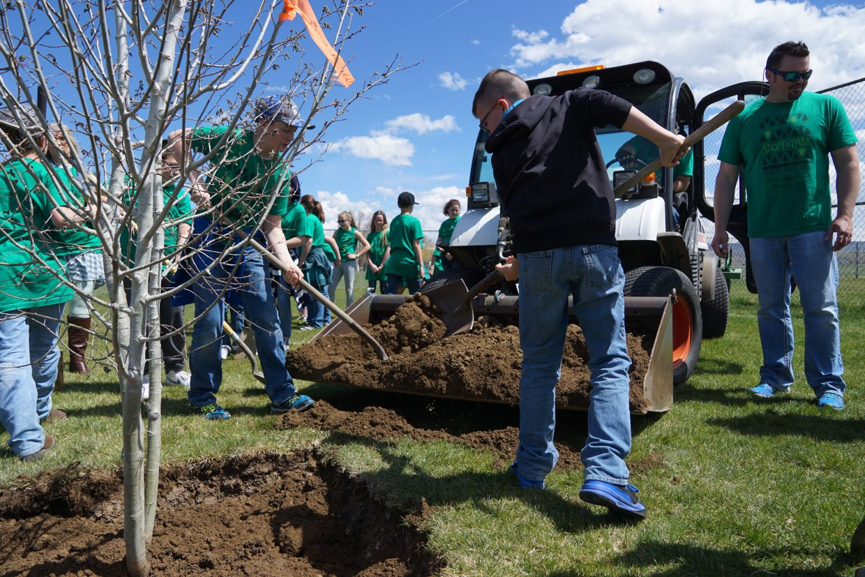 With students working on both sides, a clump of Aspen trees was planted in record time Monday, April 23.