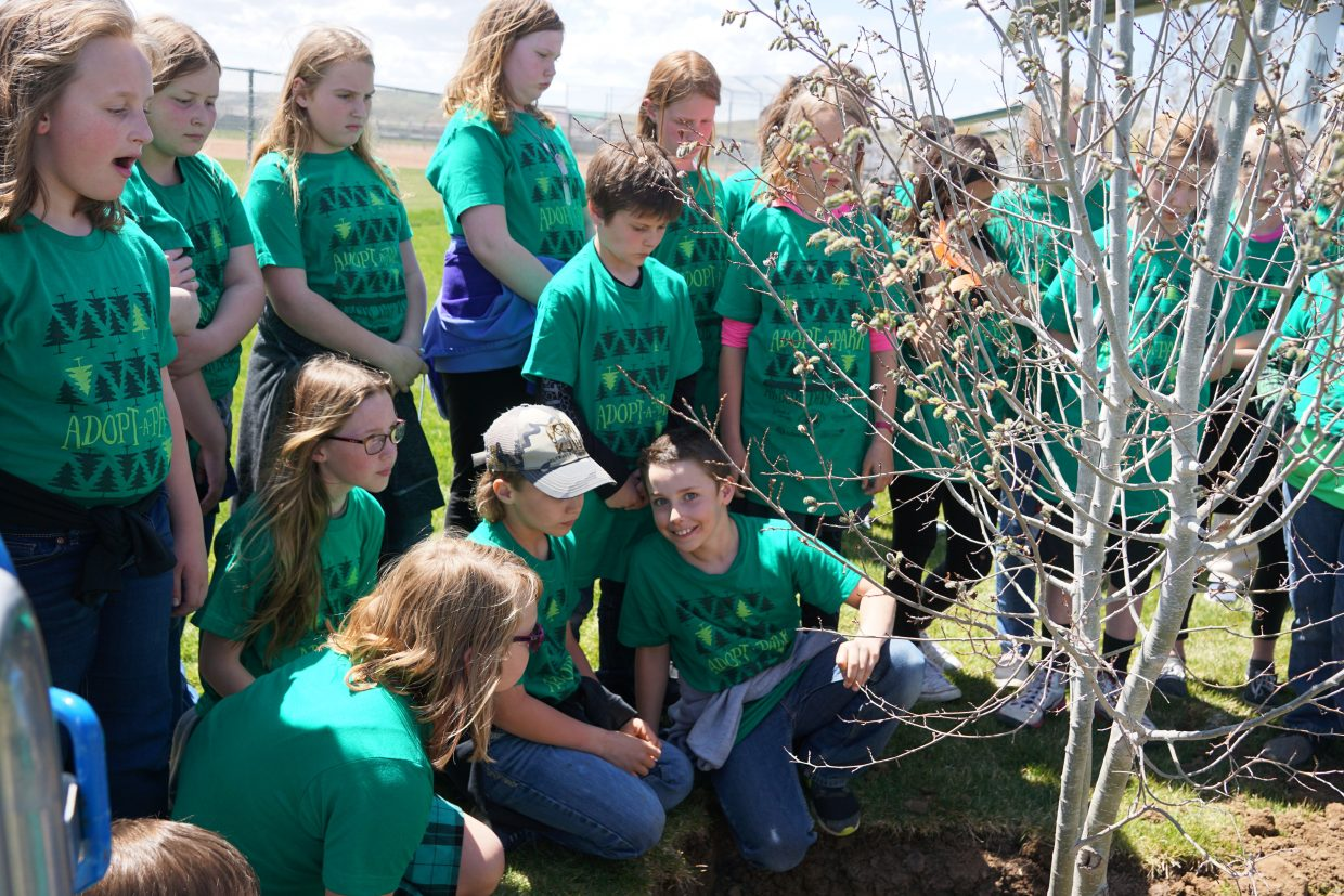 Students lean in to learn how to identify the roots of a tree.
