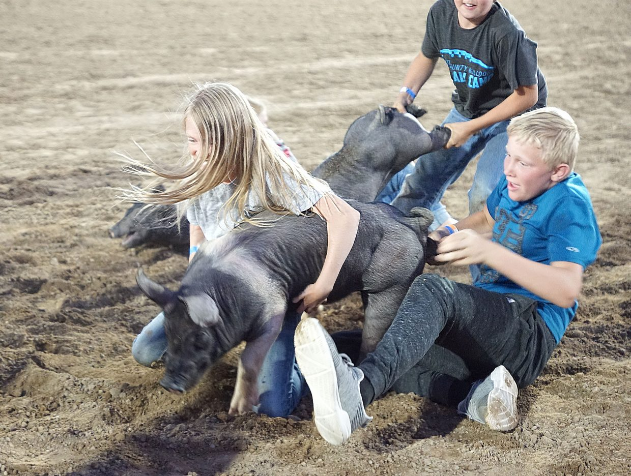 Occasionally two children — in this case, one on the front and one on the back — catch the same pig, requiring an adult volunteers to determine who gets the keep the pig.