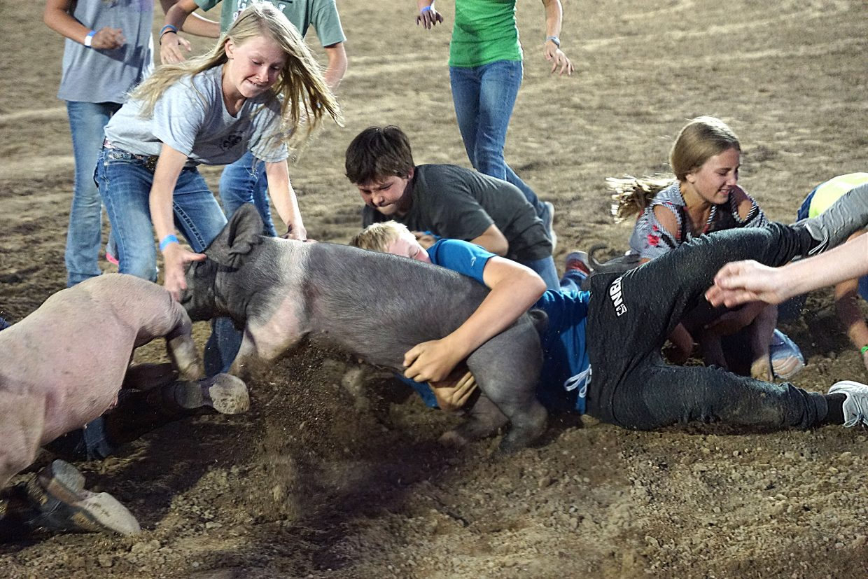 Kids and pigs get tangled up.