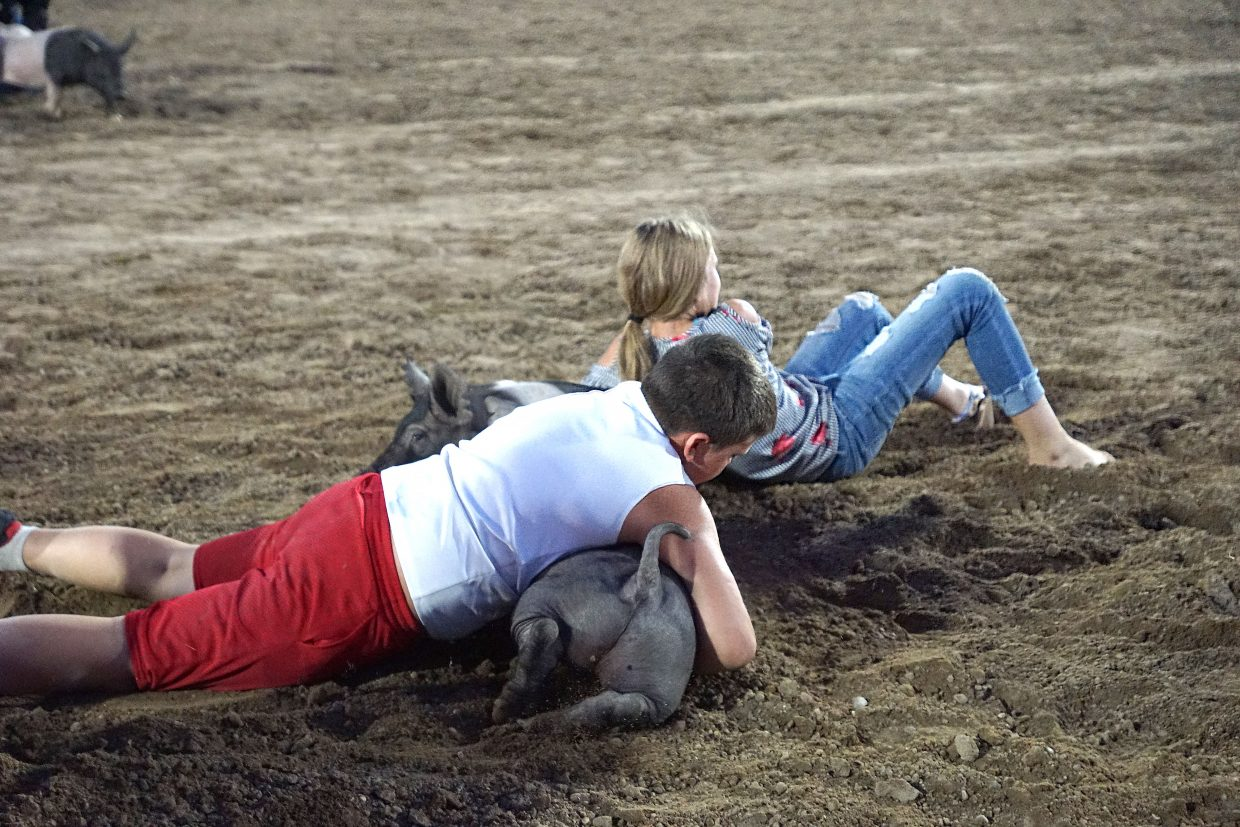 Young pigs are almost as large as the youngsters who tackled them in the Catch-a-Pig contest.