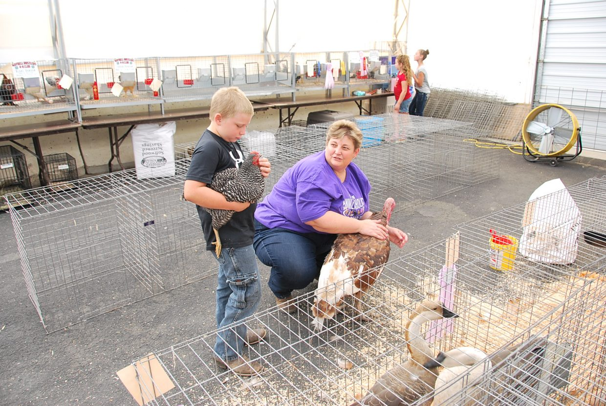 Animals receive visitors in the rabbit and poultry tent at the Moffat County Fair.