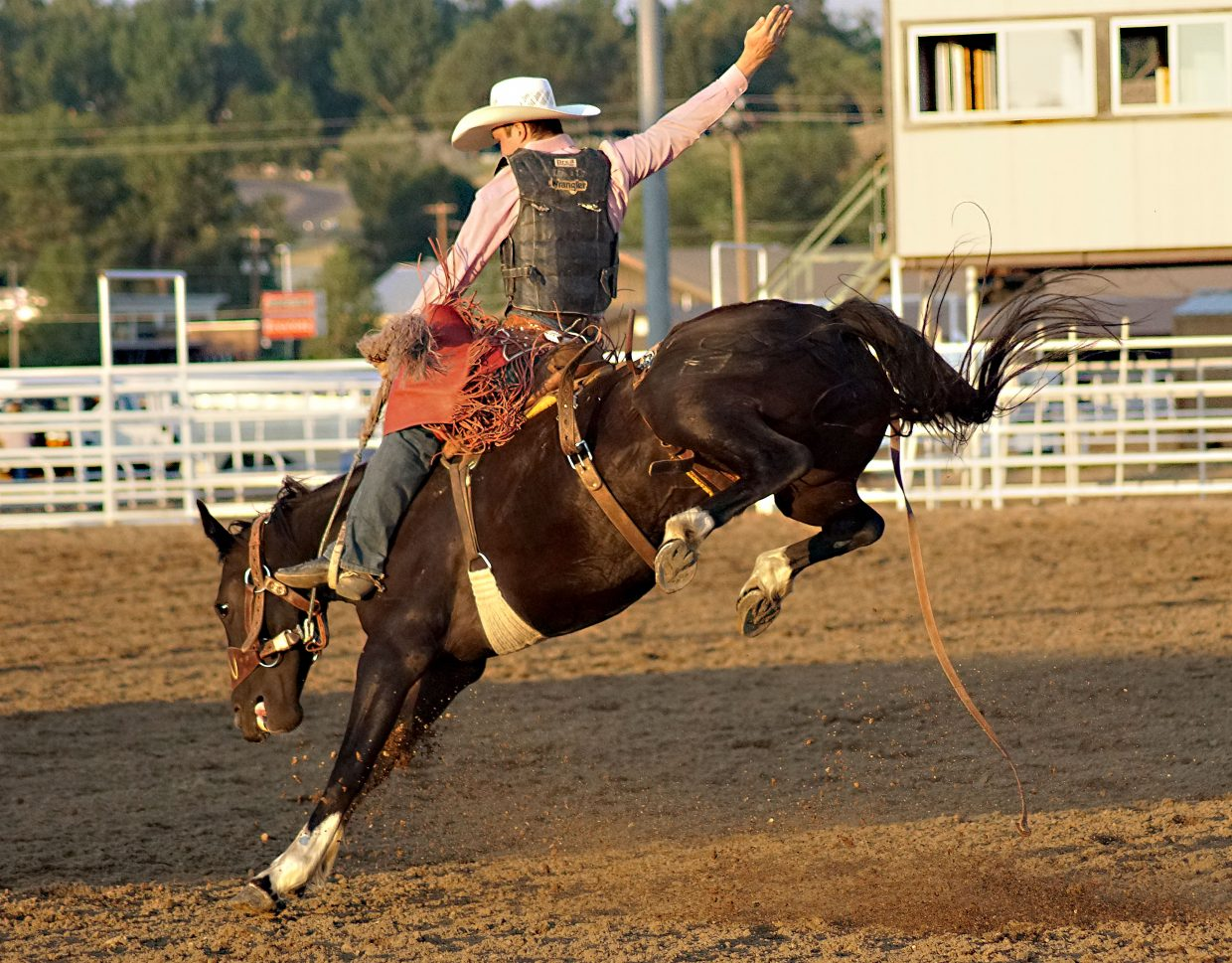 A saddle bronc rider reaches high into the air to keep his balance on a horse determined to unseat him.