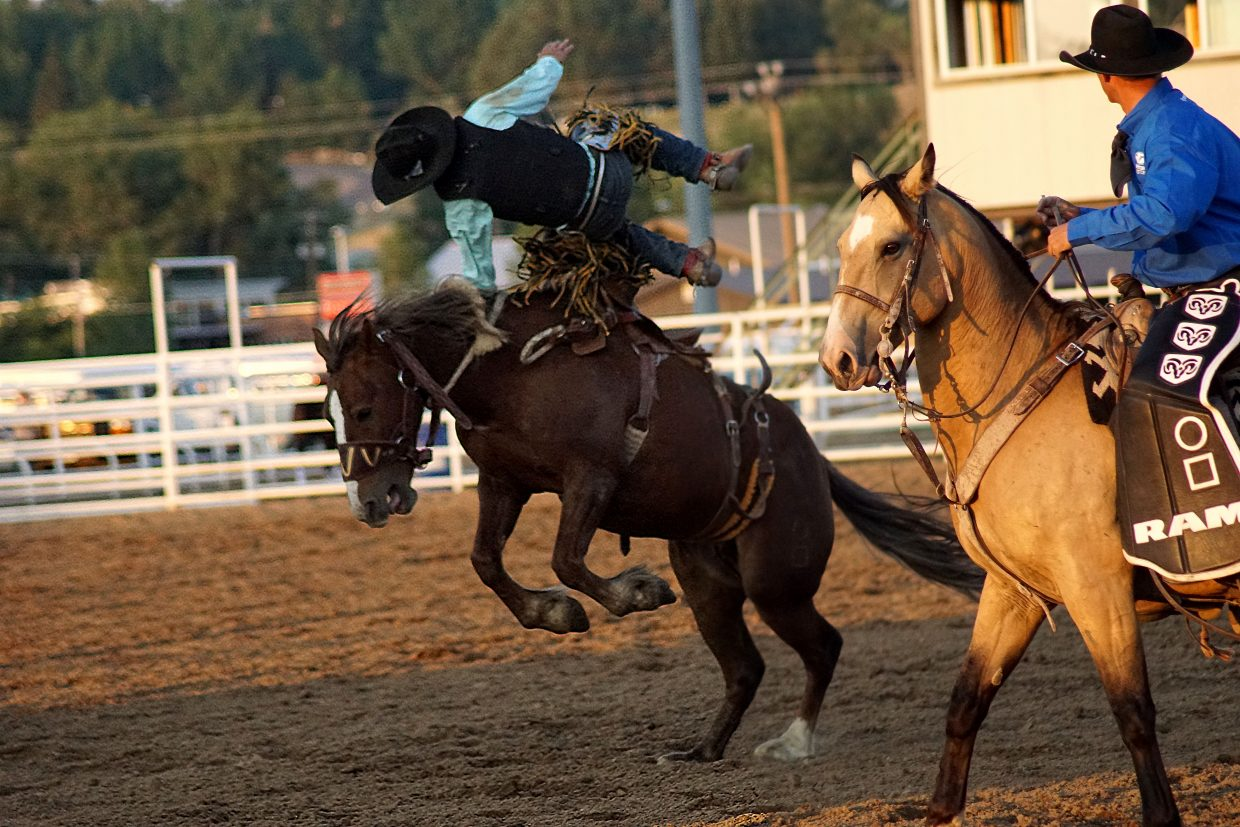A cowboy loses his seat during the saddle bronc competition.