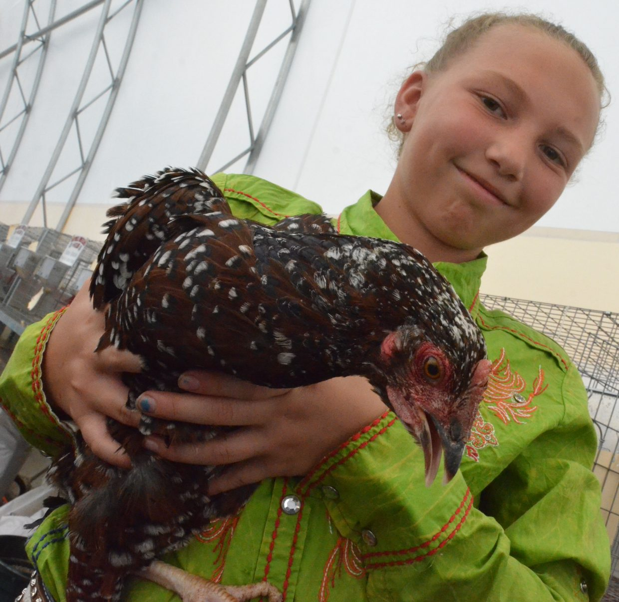 Abbie Blackwell displays one of several chickens entered in the poultry show Friday at the Moffat County Fair.