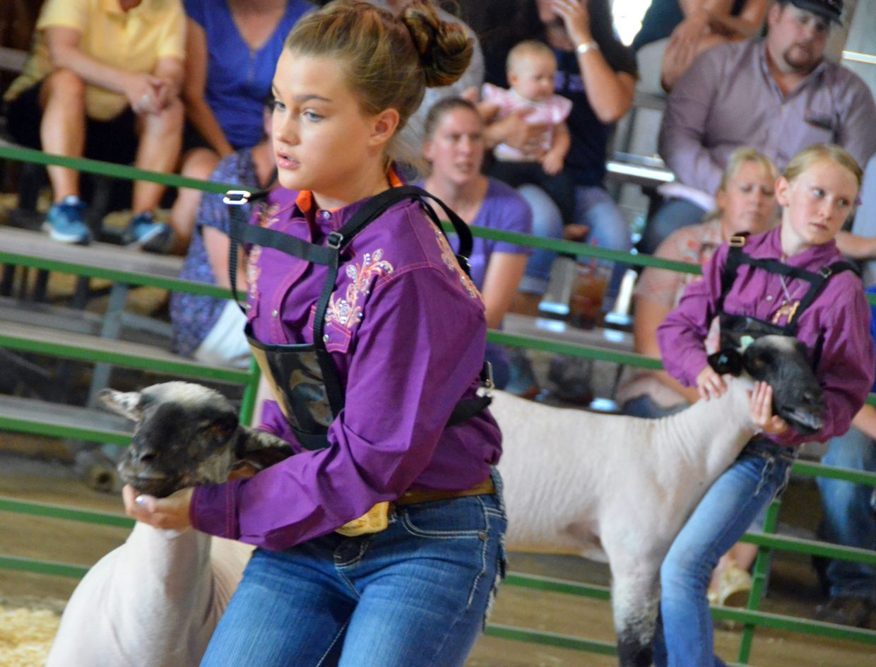 Brook Wheeler, left, and Joslyn Bacon present their animals  during the market class division of the Wednesday sheep show at the Moffat County Fair.