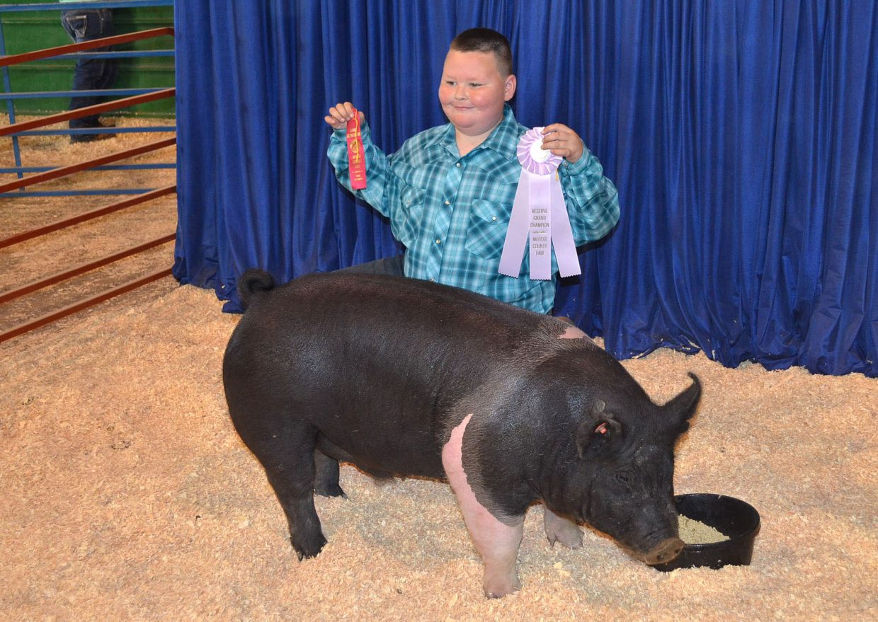 Zachary Winters, 9, shows off his Reserve Grand Champion ribbon in junior showmanship during the swine show, held Friday at the Moffat County Fair.