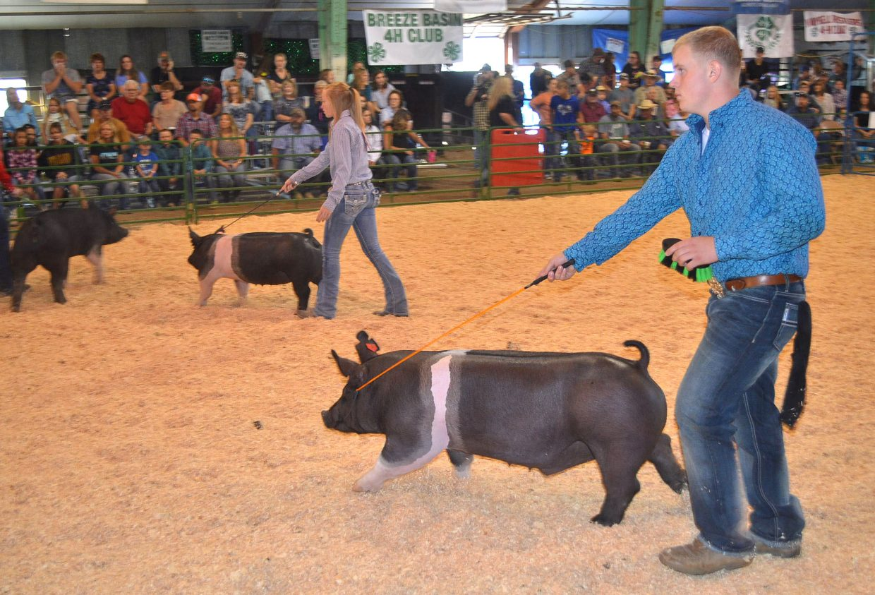 Senior showmanship Grand Champion Jared Baker, foreground, participates in the Swine Show on Friday at the Moffat County Fair.