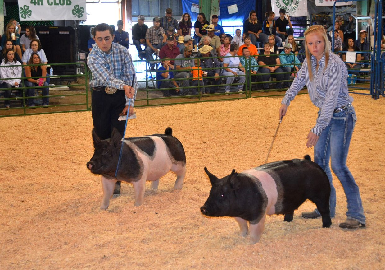 Dustin McLaughlin, left, shows his hog alongside Reese Weber during the Moffat County Fair swine show, held Friday. McLaughlin was named Reserve Grand Champion in the senior showmanship division.