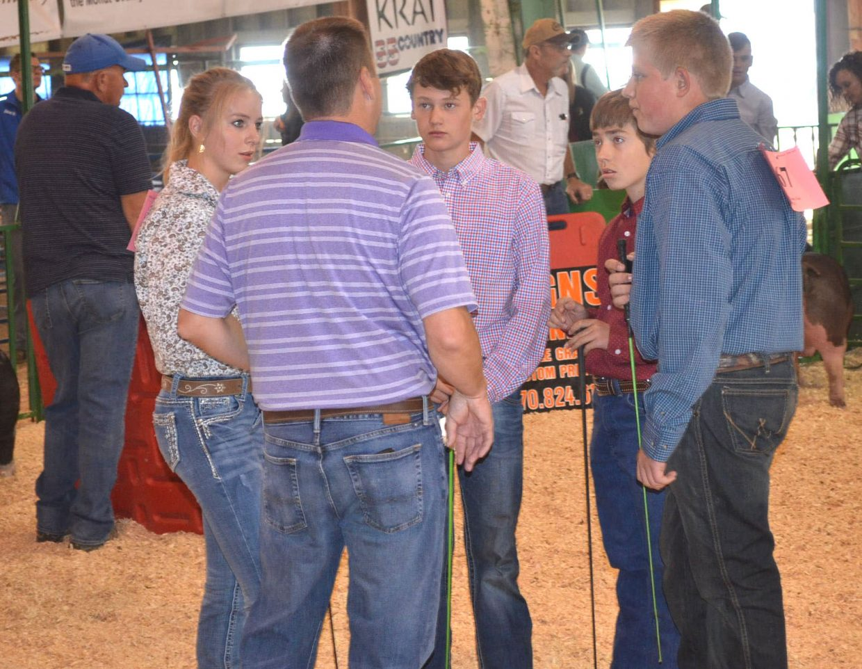 Participants in the intermediate showmanship division of the Moffat County Fair's swine show listen to instructions from Judge Bill Disberger on Friday.