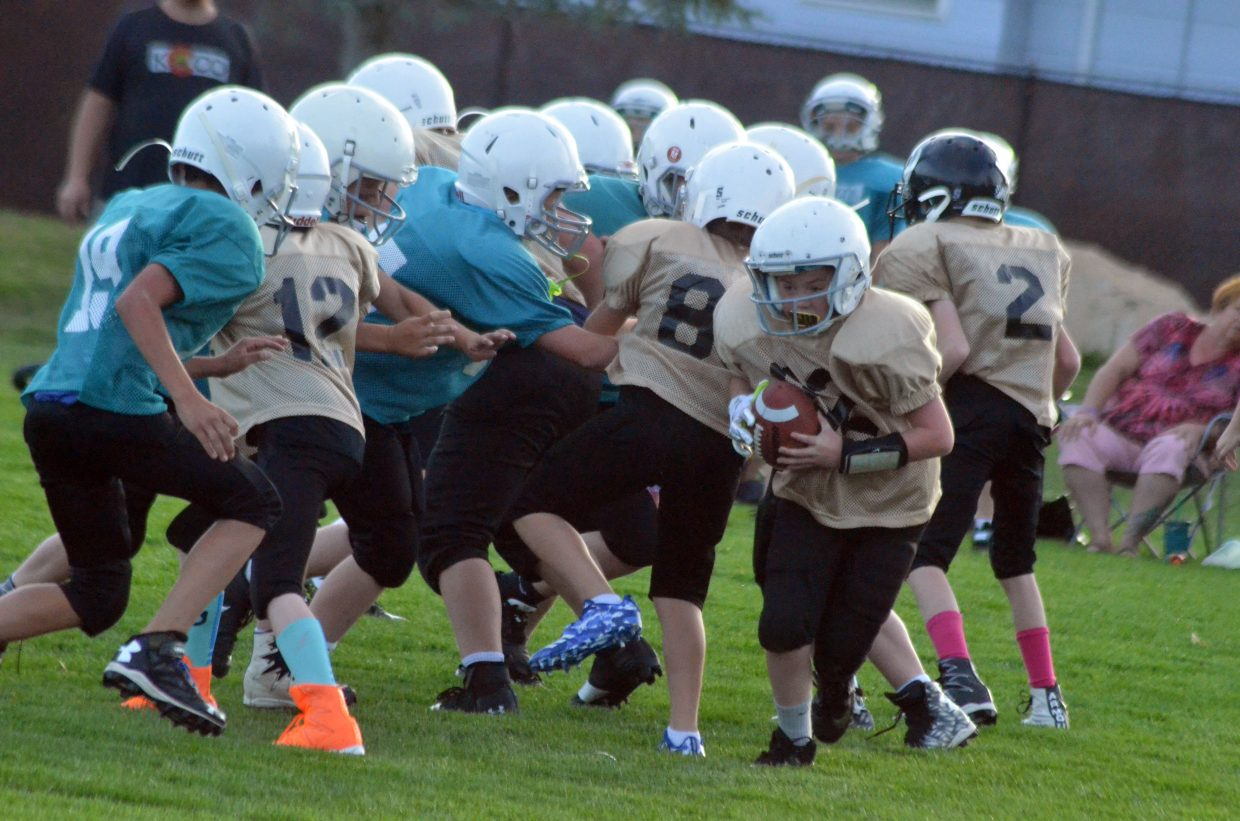 The Saints' Trayson Carlson looks for a route around the Dolphin line during a Doak Walker fifth- and sixth-grade game.