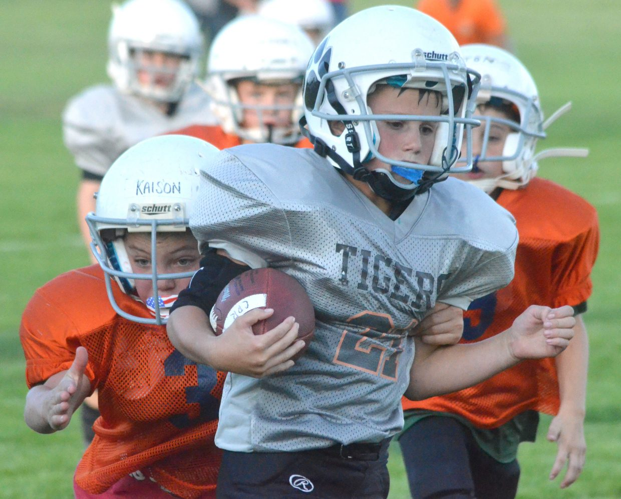 The Hayden Tigers lead the third- and fourth-grade division of Doak Walker tackle football and will play for the championship Wednesday, Sept. 26 at Moffat County High School.