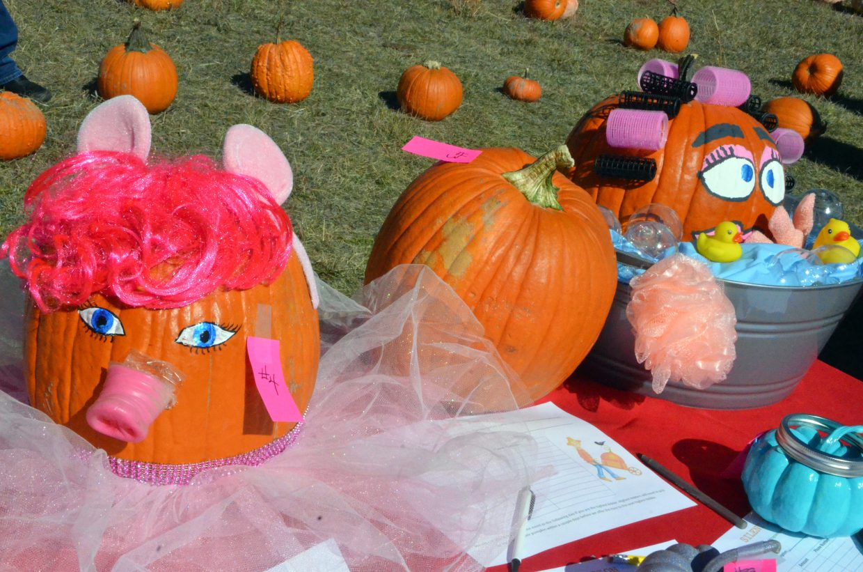 Specially decorated pumpkins are up for bids at Saturday's pumpkin patch at Wyman Living History Museum.