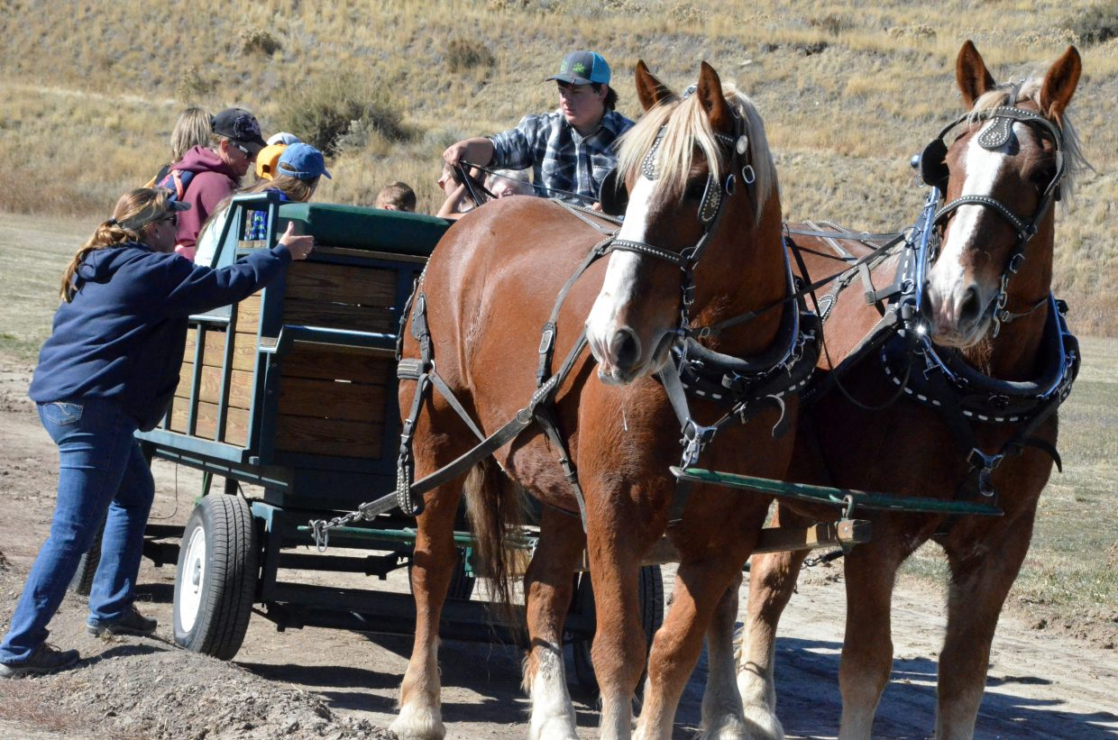 The Anson family hitches up horses for wagon rides at Saturday's pumpkin patch at Wyman Living History Museum.