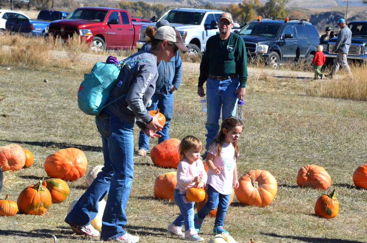Families make their pumpkin picks during Saturday's pumpkin patch at Wyman Living History Museum.