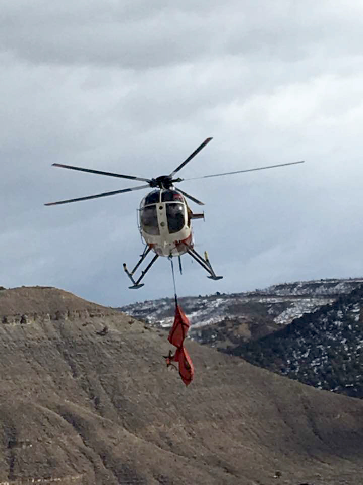 A captured deer is air lifted to the research camp.