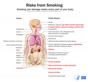 Smokers often underestimate the severity of risks