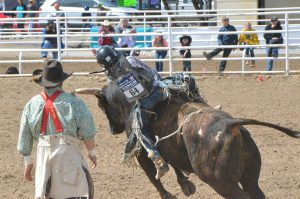 No bull about it: Moffat County's Logan Durham wins state rodeo title, Northwest Colorado sending multiple riders to nationals