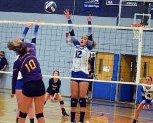Moffat County volleyball to host first of multiple camps: Bulldog Sports — Week of July 17, 2019