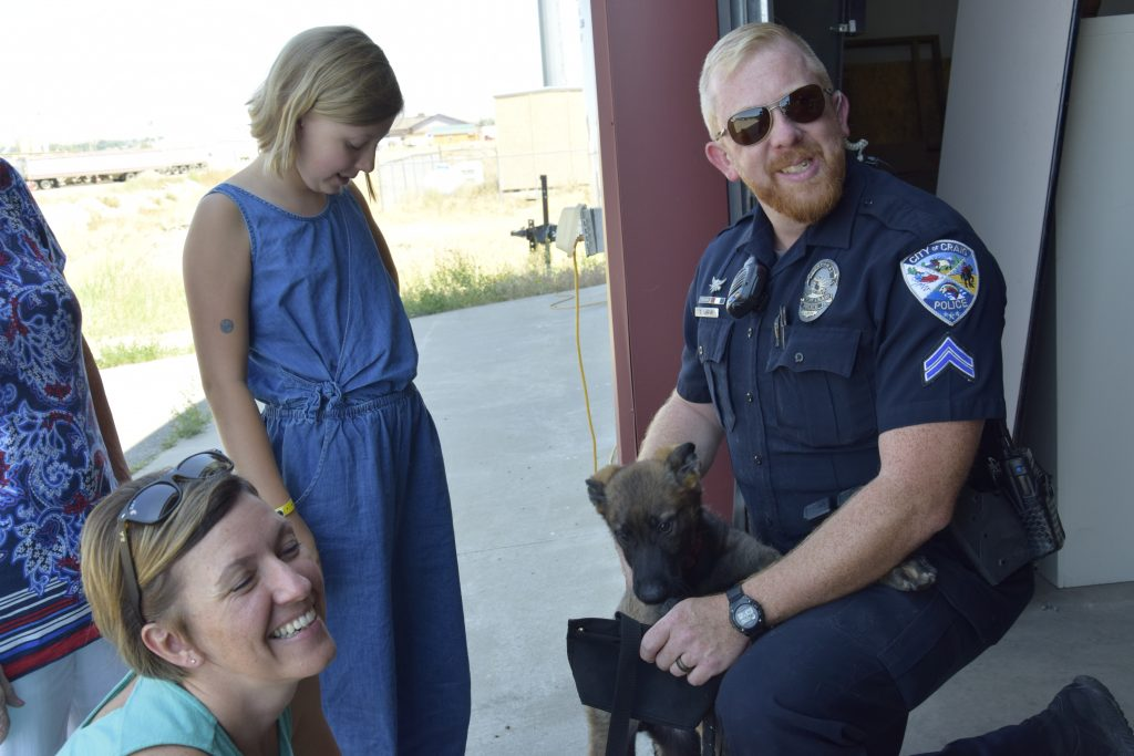 Puppy police officer: Craig's newest canine crimefighter will hit