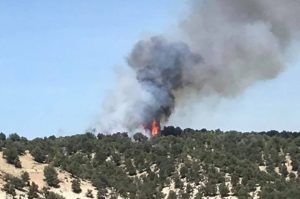 Shed Fire ongoing in Rio Blanco County, reaching 20 percent containment